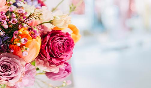 flowers-by-design-orbipro-desktop-size