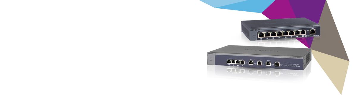 Vpn Firewalls Fvs318n Seguridad Productos Empresas
